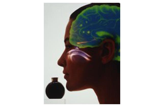 ¿Podría una sencilla prueba del olfato ayudar a detectar el Alzheimer?